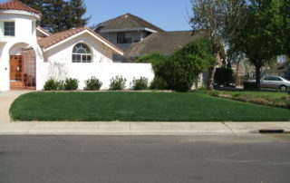 lawn care after