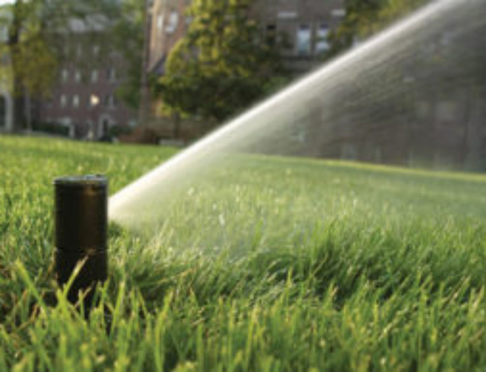 How to Water Your Lawn Properly